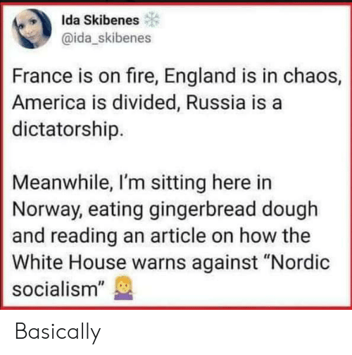 "the white house: Ida Skibenes  @ida_skibenes  France is on fire, England is in chaos,  America is divided, Russia is a  dictatorship.  Meanwhile, I'm sitting here in  Norway, eating gingerbread dough  and reading an article on how the  White House warns against ""Nordic  socialism"" Basically"