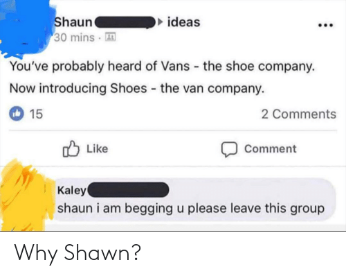 Vans: ideas  haun  30 mins A  You've probably heard of Vans the shoe company.  Now introducing Shoes the van company.  2 Comments  15  Comment  Like  Kaley  shaun i am begging u please leave this group Why Shawn?