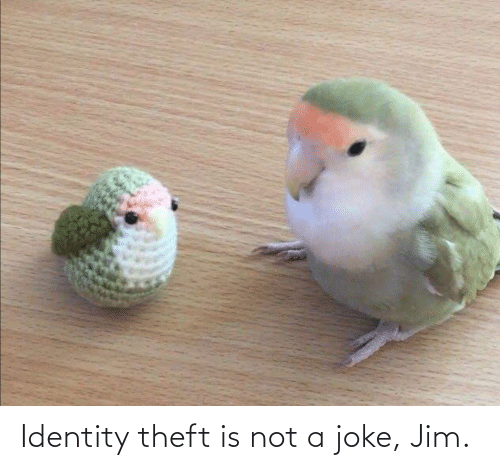 Theft: Identity theft is not a joke, Jim.