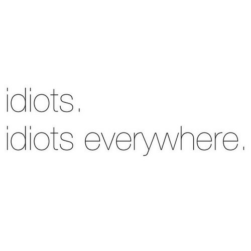 Everywhere, Idiots, and Idiots Everywhere: idiots  idiots everywhere