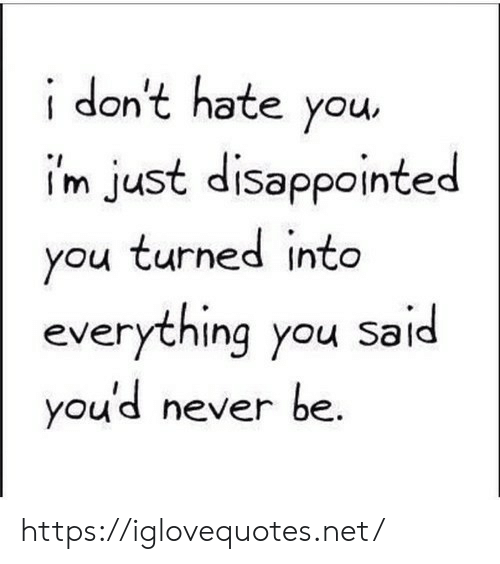 Disappointed, Never, and Net: idon't hate you  i'm just disappointed  you turned into  everything you said  you'd never be. https://iglovequotes.net/