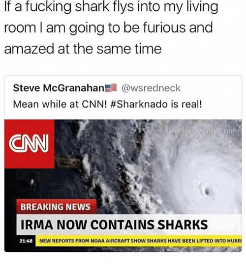 Sharked: If a fucking shark flys into my living  room l am going to be furious and  amazed at the same time  Steve McGranahan髫@wsredneck  Mean while at CNN! #Sharknado is real!  .com  CNN  BREAKING NEWS  IRMA NOW CONTAINS SHARKS  NEW REPORTS FROM NOAA AIRCRAFT SHOW SHARKS HAVE BEEN LIFTED INTO HURRI