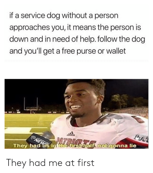 Wallet: if a service dog without a person  approaches you, it means the person is  down and in need of help. follow the dog  and you'll get a free purse or wallet  i, not gonna lie  They had us in taefrsthal They had me at first