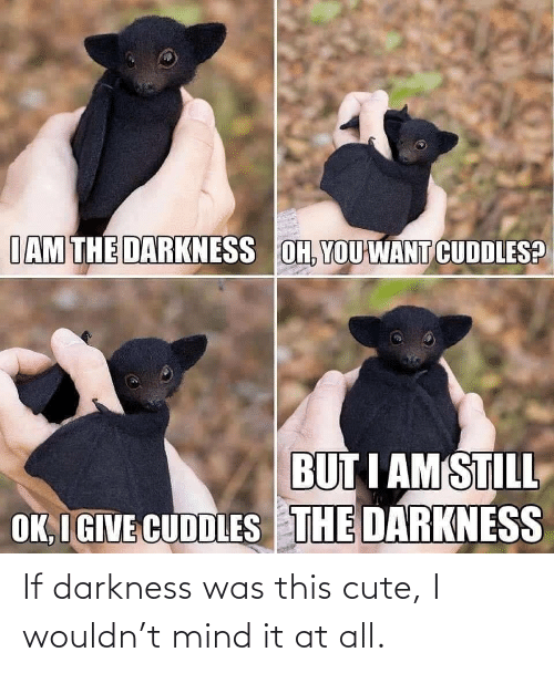 At All: If darkness was this cute, I wouldn't mind it at all.