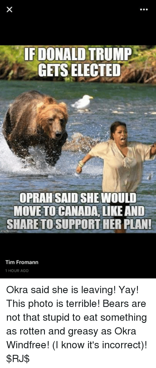 Donald Trump, Memes, and Bear: IF DONALD  TRUMP  GETS ELECTED  OPRAH SAID SHE WOULD  MOVE TO CANADA, LIKE AND  SHARE TO SUPPORT HER PLANI  Tim Fromann  1 HOUR AGO Okra said she is leaving! Yay! This photo is terrible! Bears are not that stupid to eat something as rotten and greasy as Okra Windfree! (I know it's incorrect)! $RJ$