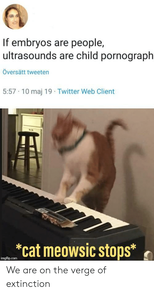 """Twitter, On the Verge, and Cat: If embryos are people,  ultrasounds are child pornograph  Översätt tweeten  5:57 10 maj 19 Twitter Web Client  """"cat meowsíc stops.)  imgflip.com We are on the verge of extinction"""