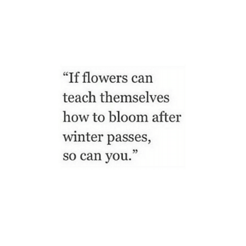 """Winter, Flowers, and How To: """"If flowers can  teach themselves  how to bloom after  winter passes,  so can you."""""""