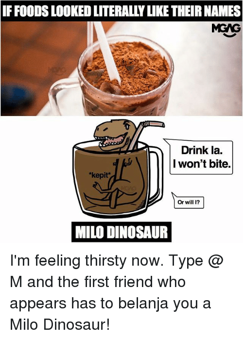 dinosaure: IF FOODS LOOKED LITERALLY LIKE THEIR NAMES  MGAG  Drink la.  I won't bite.  *kepit*  Or will 1?  MILO DINOSAUR I'm feeling thirsty now. Type @ M and the first friend who appears has to belanja you a Milo Dinosaur!