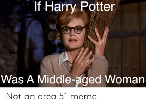 Harry Potter, Meme, and Reddit: If Harry Potter  Was A Middle-aged Woman Not an area 51 meme