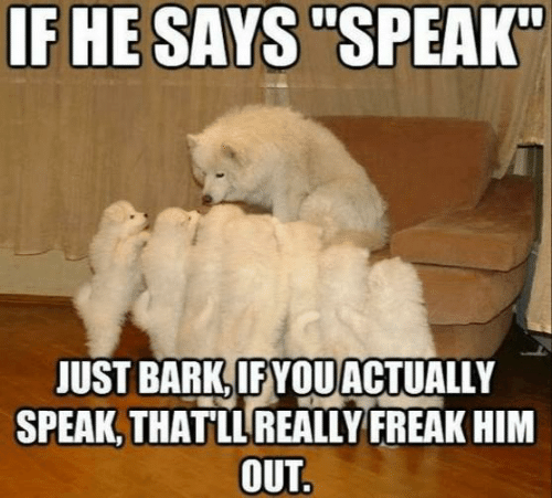 "Him, Speak, and Just: IF HE SAYS ""SPEAK""  JUST BARK, IFYOUACTUALLY  SPEAK, THATLLREALLY FREAK HIM  OUT."