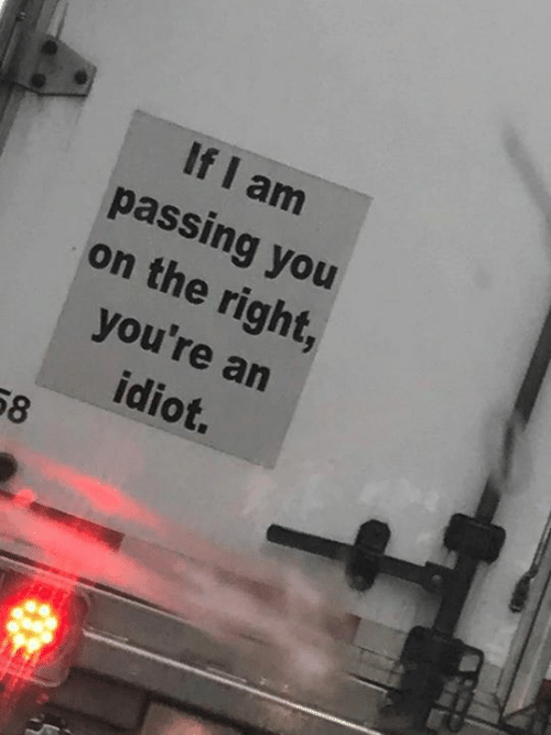 Dank, Idiot, and 🤖: If I am  passing you  on the right,  you're an  idiot.  58