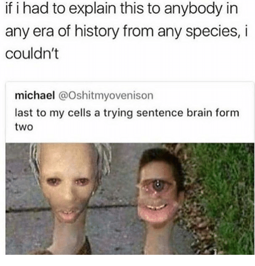 Brain, History, and Michael: if i had to explain this to anybody in  any era of history from any species, i  couldn't  michael @Oshitmyovenison  last to my cells a trying sentence brain form  two