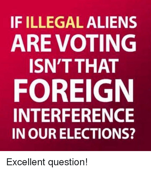 Memes, Aliens, and 🤖: IF ILLEGAL ALIENS  AREVOTING  ISN'T THAT  FOREIGN  INTERFERENCE  IN OUR ELECTIONS? Excellent question!