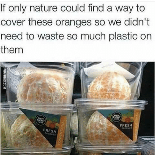 Fresh, Memes, and Nature: If only nature could find a way to  cover these oranges so we didn't  need to waste so much plastic on  them  FRESH  FRESH