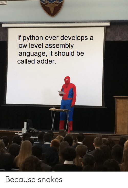 Snakes, Python, and Language: If python ever develops a  low level assembly  language, it should be  called adder. Because snakes