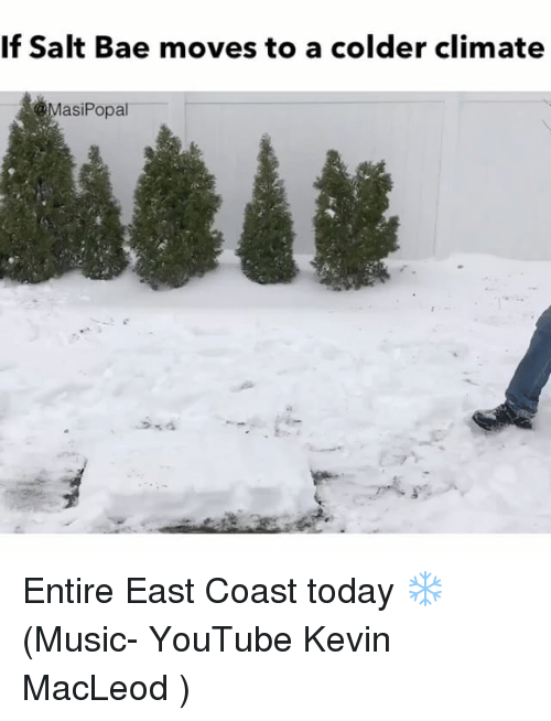 Salt Bae: If Salt Bae moves to a colder climate  asi Popal Entire East Coast today ❄️ (Music- YouTube Kevin MacLeod )