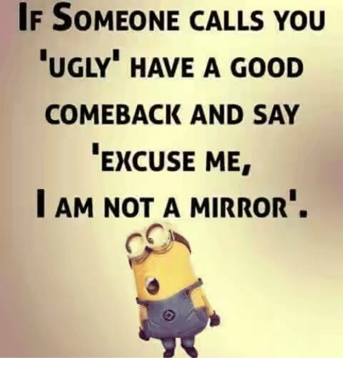 "Memes, Ugly, and Good: IF SOMEONE CALLS YOU  UGLY"" HAVE A GooD  COMEBACK AND SAY  EXCUSE ME  I AM NOT A MIRROR."