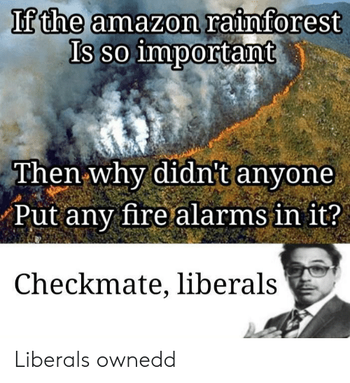 Amazon, Fire, and Why: If the amazon rainforest  Is so important  Then why didnt anyone  Put any fire alarms in it?  Checkmate, liberals Liberals ownedd