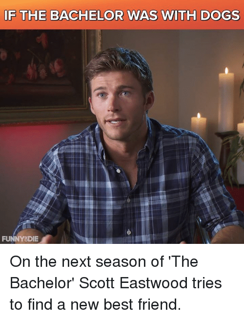 The Bachelor: IF THE BACHELOR WAS WITH DOGS  FUNNY DIE On the next season of 'The Bachelor' Scott Eastwood tries to find a new best friend.