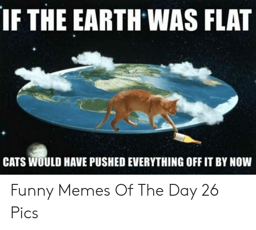 memes of the day: IF THE EARTH WAS FLAT  CATS WOULD HAVE PUSHED EVERYTHING OFF IT BY NOW Funny Memes Of The Day 26 Pics