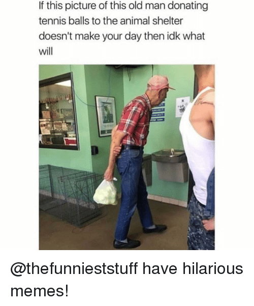 Memes, Old Man, and Animal: If this picture of this old man donating  tennis balls to the animal shelter  doesn't make your day then idk what  will @thefunnieststuff have hilarious memes!