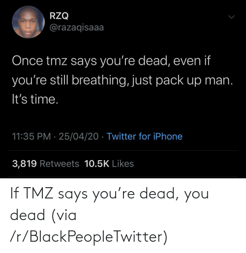 Says You: If TMZ says you're dead, you dead (via /r/BlackPeopleTwitter)