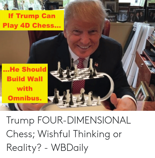 Four Dimensional: If Trump Can  Play 4D Chess...  ...He Should  Build Wall  with  Omnibus. Trump FOUR-DIMENSIONAL Chess; Wishful Thinking or Reality? - WBDaily