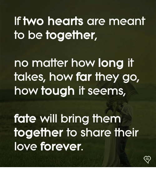 Love, Memes, and Forever: If two hearts are meant  to be together,  no matter how long it  takes, how far they go,  how tough it seems,  fate will bring them  fogefher fo share their  love forever.
