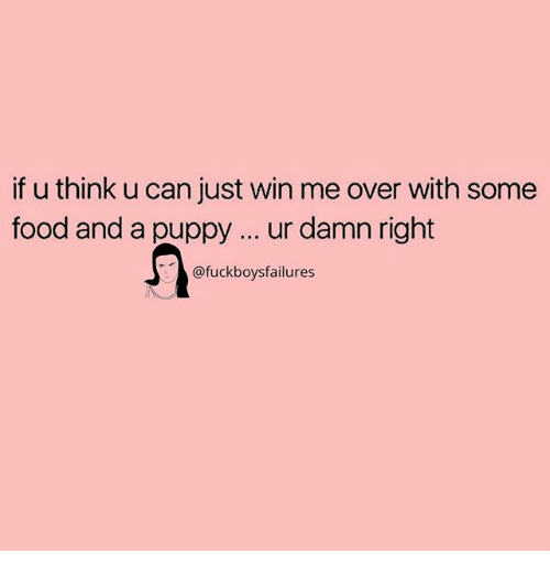 Food, Puppy, and Girl Memes: if u think u can just win me over with somee  food and a puppy ur damn right  @fuckboysfailures