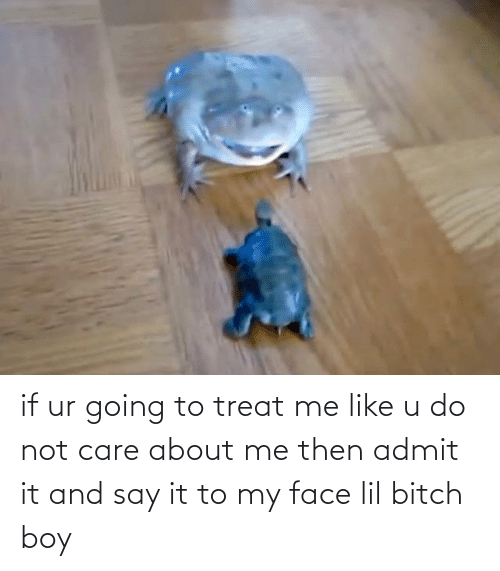 lil bitch: if ur going to treat me like u do not care about me then admit it and say it to my face lil bitch boy