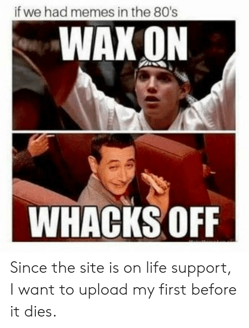 wax: if we had memes in the 80's  WAX ON  WHACKS OFF Since the site is on life support, I want to upload my first before it dies.