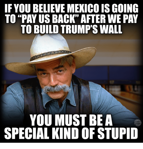 "Memes, Mexico, and 🤖: IF YOU BELIEVE MEXICO ISGOING  TO PAY US BACK"" AFTER WE PAY  TO BUILD TRUMP'S WALL  YOU MUST BE A  SPECIAL KIND OF STUPID"