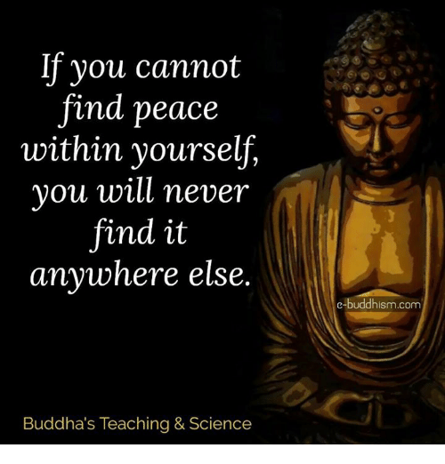 Memes, Science, and Buddhism: If you cannot  and peace  within yourself,  you will never  find it  anywhere else.  Buddha's Teaching & Science  e-buddhism com