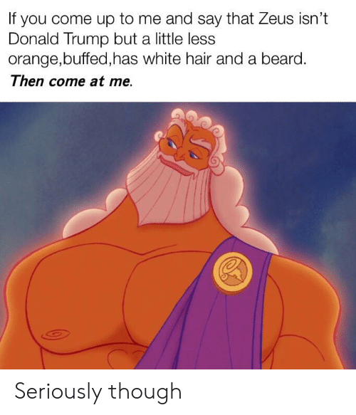Beard, Donald Trump, and Reddit: If you come up to me and say that Zeus isn't  Donald Trump but a little less  orange,buffed,has white hair and a beard.  Then come at me. Seriously though