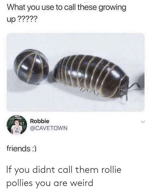 Didnt: If you didnt call them rollie pollies you are weird