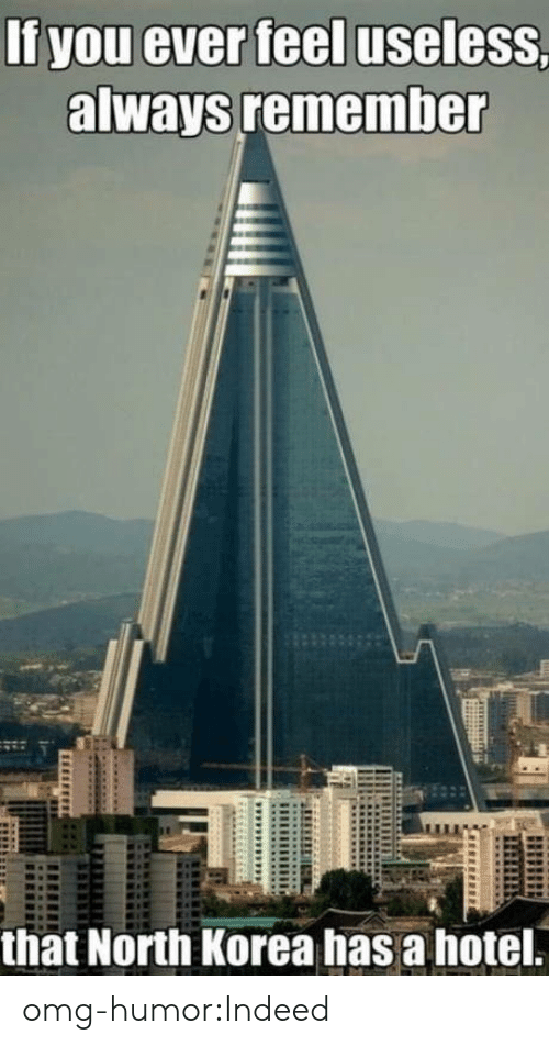 North Korea, Omg, and Tumblr: If you ever feel useless,  always remember  that North Korea has a hotel. omg-humor:Indeed