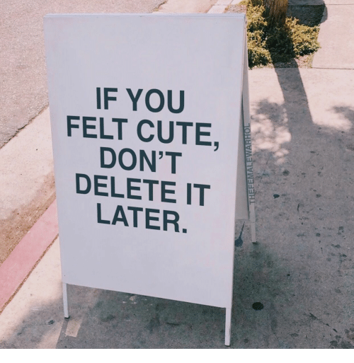 Cute, You, and Delete: IF YOU  FELT CUTE,  DON'T  DELETE IT  LATER.  THEFEMALEWARHOL