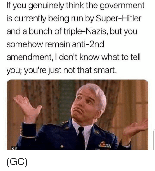 Gif, Memes, and Run: If you genuinely think the government  is currently being run by Super-Hitler  and a bunch of triple-Nazis, but you  somehow remain anti-2nd  amendment, I don't know what to tell  you; you're just not that smart.  GIF (GC)