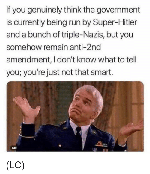 2nd Amendment: If you genuinely think the government  is currently being run by Super-Hitler  and a bunch of triple-Nazis, but you  somehow remain anti-2nd  amendment, I don't know what to tell  you; you're just not that smart.  GIF (LC)