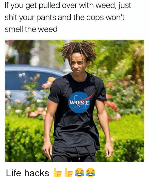 Funny, Life, and Shit: If you get pulled over with weed, just  shit your pants and the cops won't  smell the weed  woRE Life hacks 👍👍😂😂