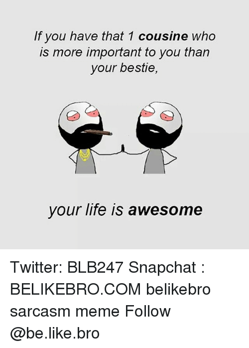 Be Like, Life, and Meme: If you have that 1 cousine who  is more important to you tharn  your bestie,  your life is awesome Twitter: BLB247 Snapchat : BELIKEBRO.COM belikebro sarcasm meme Follow @be.like.bro