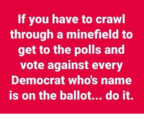 Memes, 🤖, and Crawl: If you have to crawl  through a minefield to  get to the polls and  vote against every  Democrat who's name  is on the ballot... do it.
