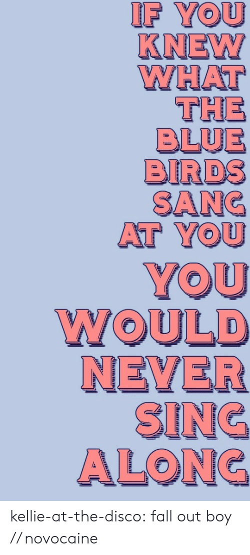 disco: IF YOU  KNEW  WHAT  THE  BLUE  BIRDS  SANC  AT YOU kellie-at-the-disco:  fall out boy // novocaine