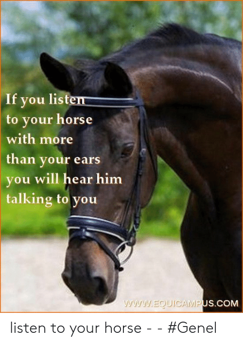 You Will: If you listen  to your horse  with more  than your ears  you will hear him  talking to you  www.EQUIOCAMPUS.COM listen to your horse -   - #Genel