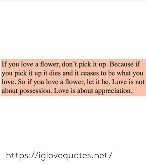 Dies: If you love a flower, don't pick it up. Because if  you pick it up it dies and it ceases to be what you  love. So if you love a flower, let it be. Love is not  about possession. Love is about appreciation. https://iglovequotes.net/