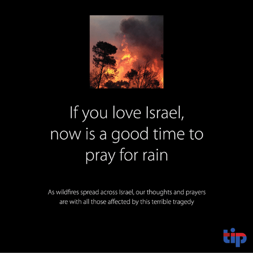 Memes, Affect, and Israel: If you love Israel  now is a good time to  pray for rain  As wildfires spread across Israel, our thoughts and prayers  are with all those affected by this terrible tragedy  tip