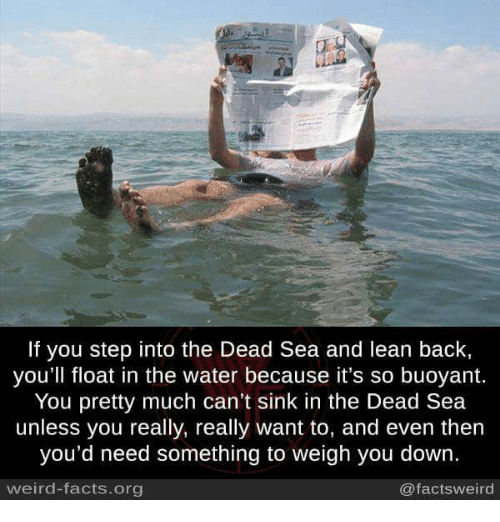 dead sea: If you step into the Dead Sea and lean back,  you'll float in the water because it's so buoyant.  You pretty much can't sink in the Dead Sea  unless you really, really want to, and even then  you'd need something to weigh you down.  weird-facts.org  @facts weird