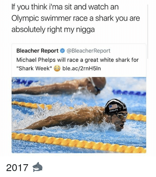 Bleachers: If you think ima sit and watch an  Olympic swimmer race a shark you are  absolutely right my nigga  Bleacher Report  @Bleacher Report  Michael Phelps will race a great white shark for  Shark Week  ble.ac/2rnH5ln 2017 🦈