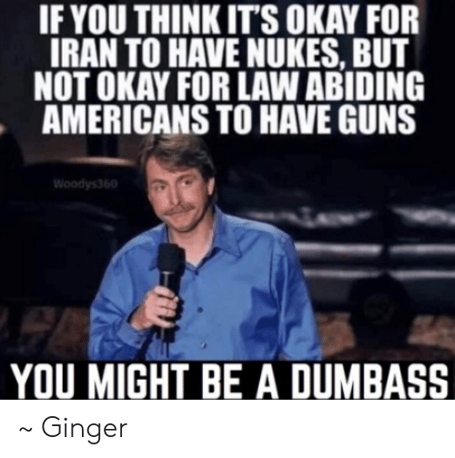 Guns, Memes, and Iran: IF YOU THINKIT'S OKAY FOR  IRAN TO HAVE NUKES, BUT  NOT OKAY FOR LAW ABIDING  AMERICANS TO HAVE GUNS  YOU MIGHT BE A DUMBASS ~ Ginger