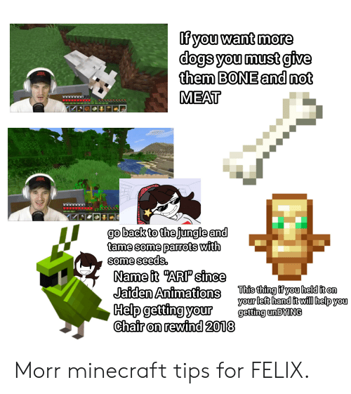Dogs, Minecraft, and Help: If you want more  dogs you must give  them BONE and not  W  MEAT  9 29  17  go back to the jungle and  tame some parrots with  some seeds  Name it ARP since  Jaiden Animations  Help getting your  Chair on rewind 2018  This thing if you held it on  your left hand it will help you  getting un DYING Morr minecraft tips for FELIX.